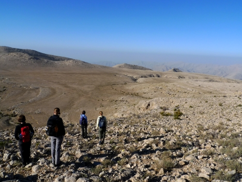 Expedition Report: UCL Kyrgyz Tien-Shan Expedition (2003)