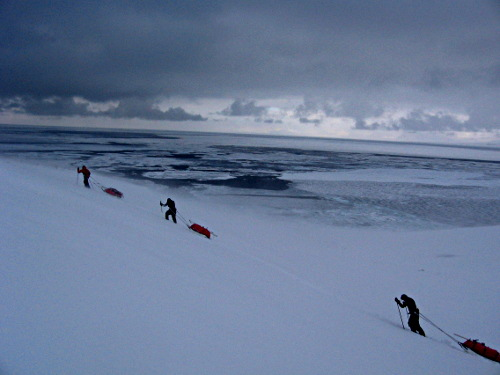 Pulk dragging in bad weather on Svalbard