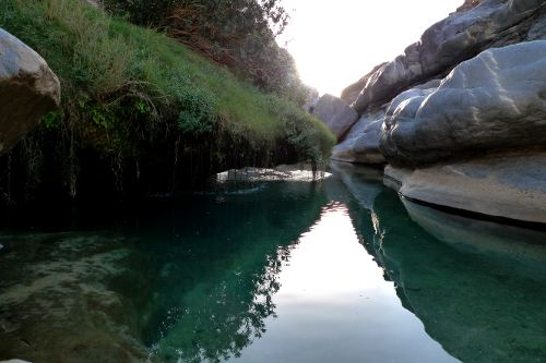 Wild Swimming in Oman