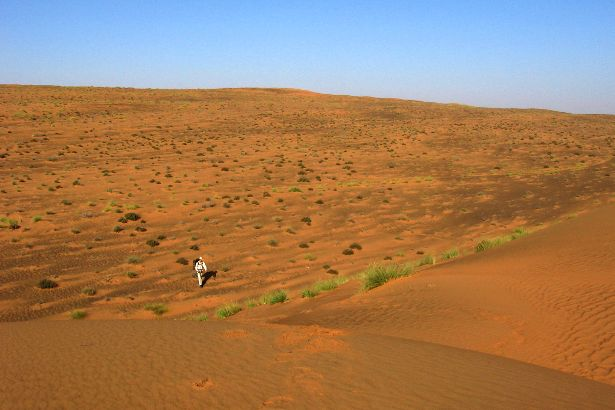 Deserts: Dehydration, Water and Minerals