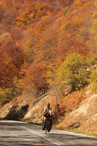 Autumn colour ın Greek mountaıns